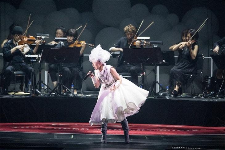 MISIA、史上最強!ともいえるデビュー20周年記念ライヴを横浜アリーナにて開催!