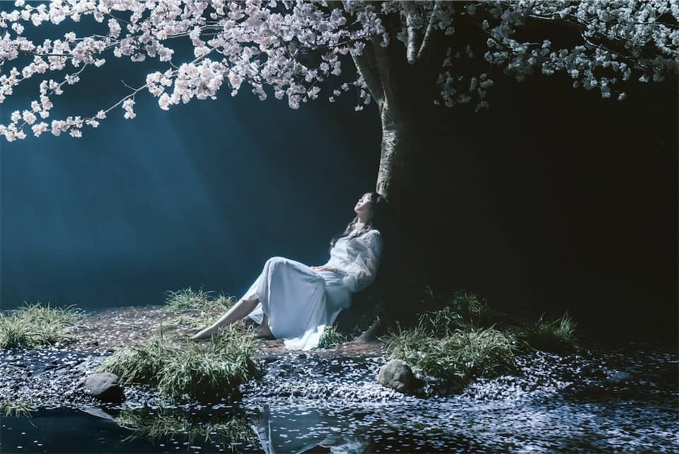 Aimer、新曲「春はゆく」ミュージックビデオ&アートワーク公開!