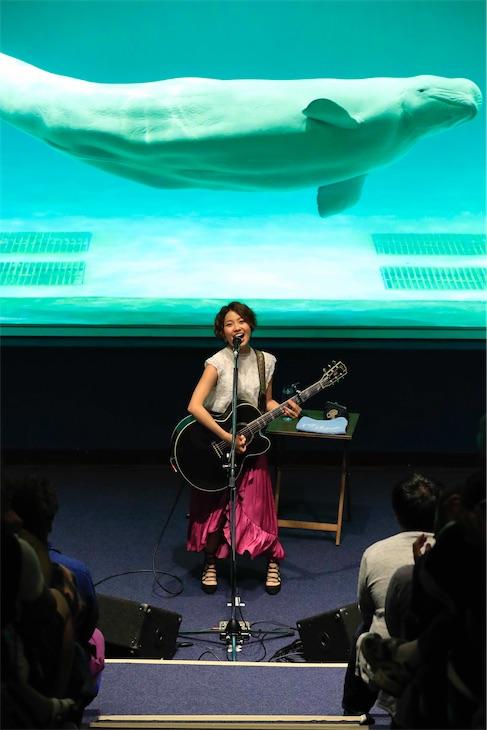 Rihwa、鴨川シーワールドでベルーガとのコラボレーションライブを披露!