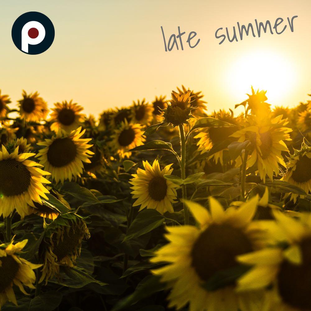 ポップシーン 編集部セレクト「夏の終りに聴きたい曲」