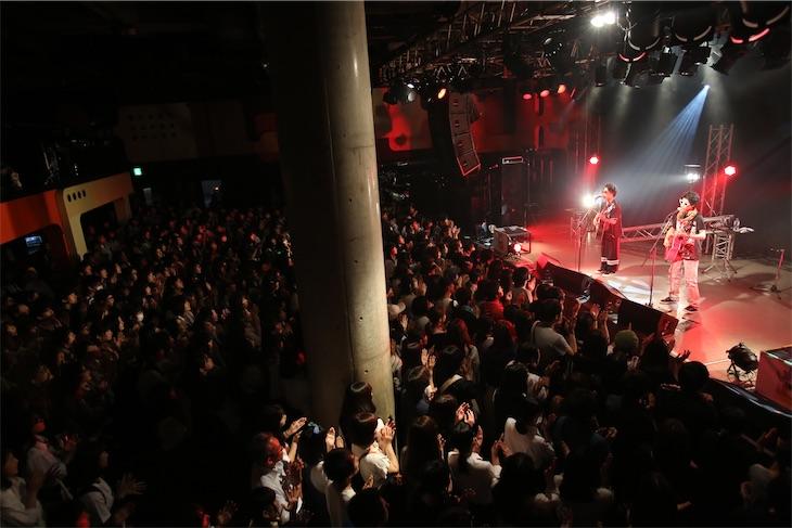 さくらしめじ、結成4周年ライブで大暴れ!激しいライブに観客も大興奮!