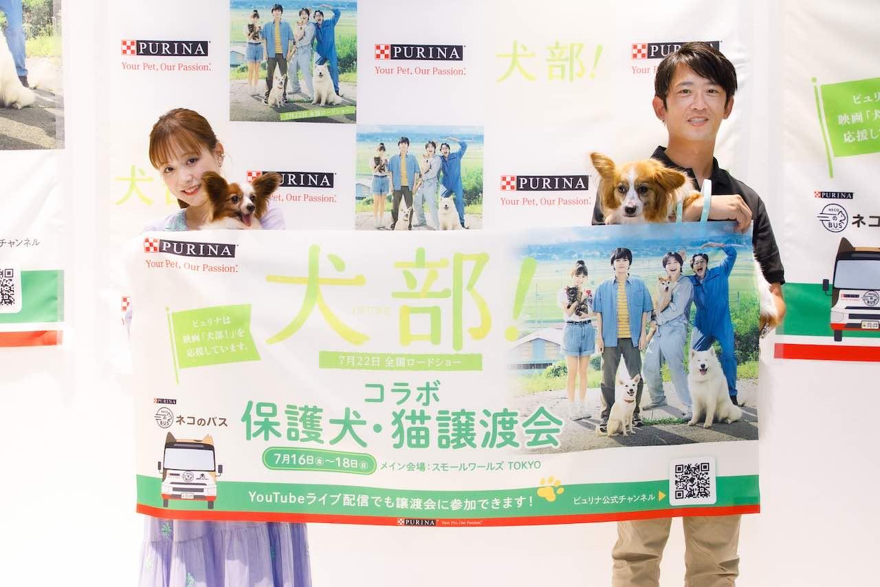 大原櫻子、保護犬猫の譲渡会を体験レポ―ト!映画『犬部!』の見どころや動物保護の大切さを語る!