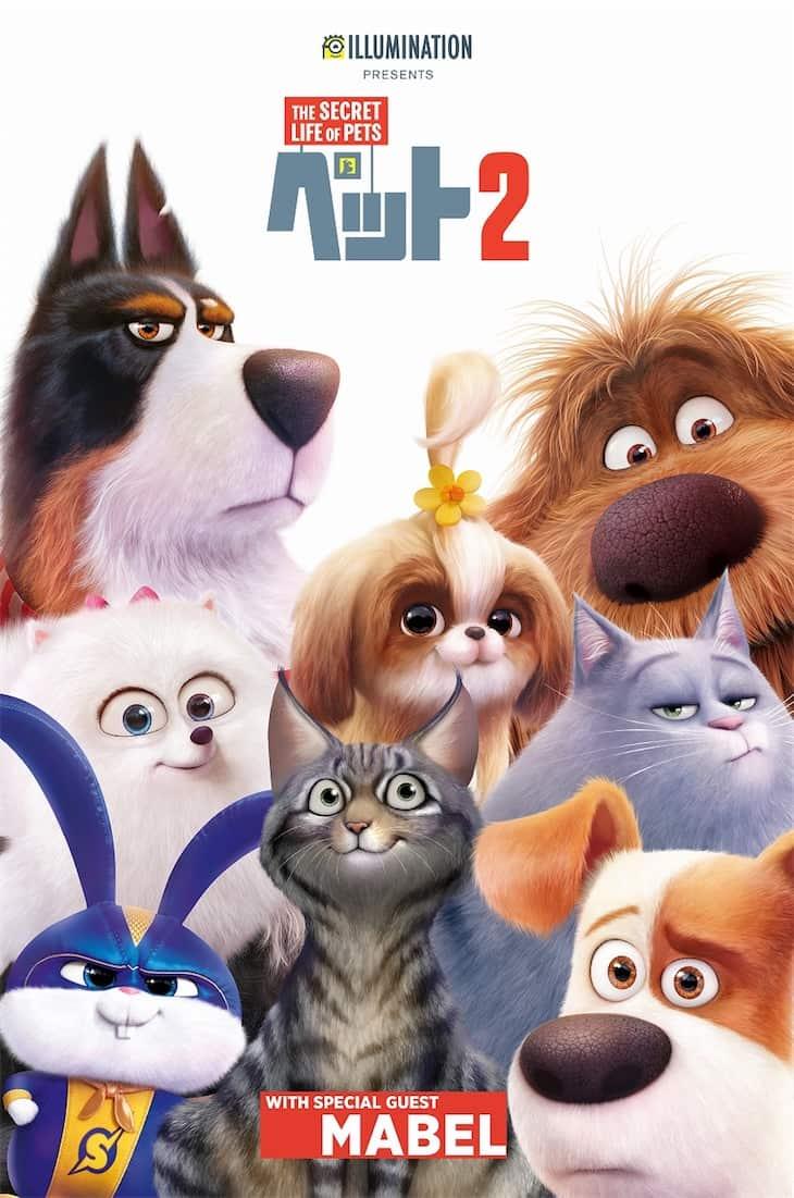 映画『ペット2』の新しいキャラクター大募集キャンペーン開始!
