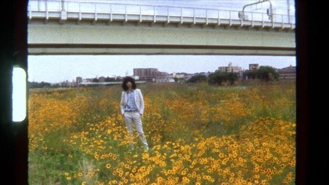 坂本慎太郎、ミュージックビデオ第二弾「ツバメの季節に」が本日18:00に公開!
